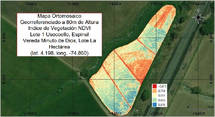 Imagen terreno en proyecto de drones cultivo de arroz